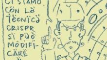Darwin's Natural selection - Selezione naturale di Darwin - Q-721 motion comics & italian webcomics - モーションコミック、4コマ漫画